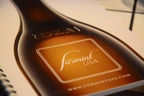 Furmint: Dry Whites of The Tokaj Wine Region in Hungary