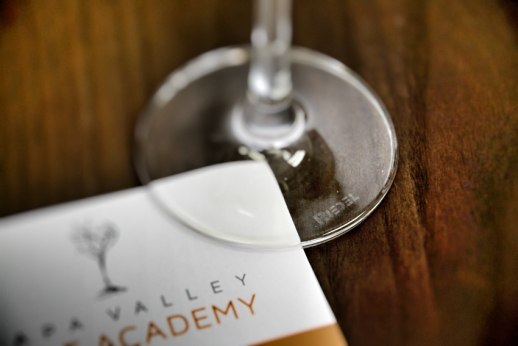 Napa Valley Wine 101