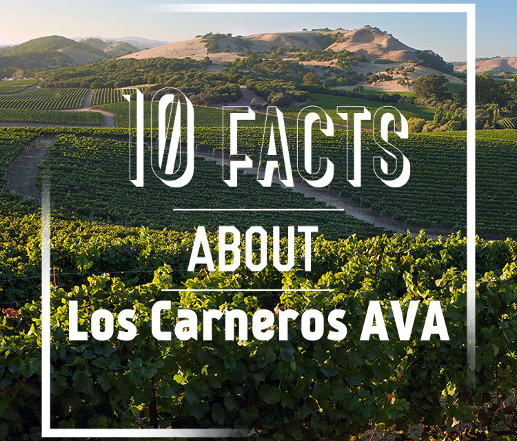 10 Facts About Los Carneros AVA