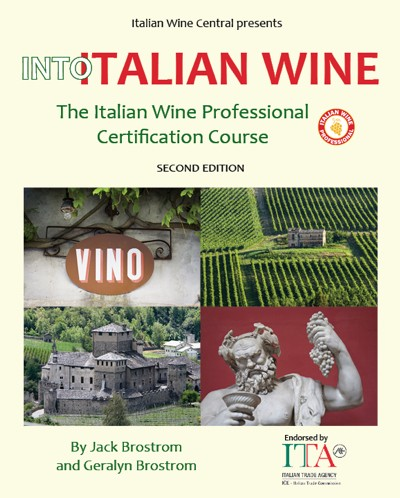 Into Italian Wine front cover