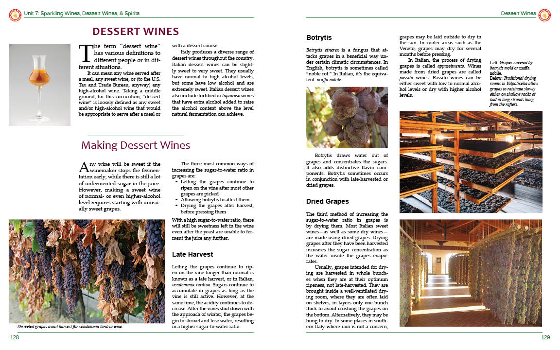 Italian Wine Professional Online Course | Napa Valley Wine Academy