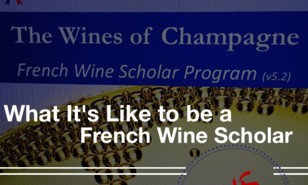 What It's Like to be a French Wine Scholar