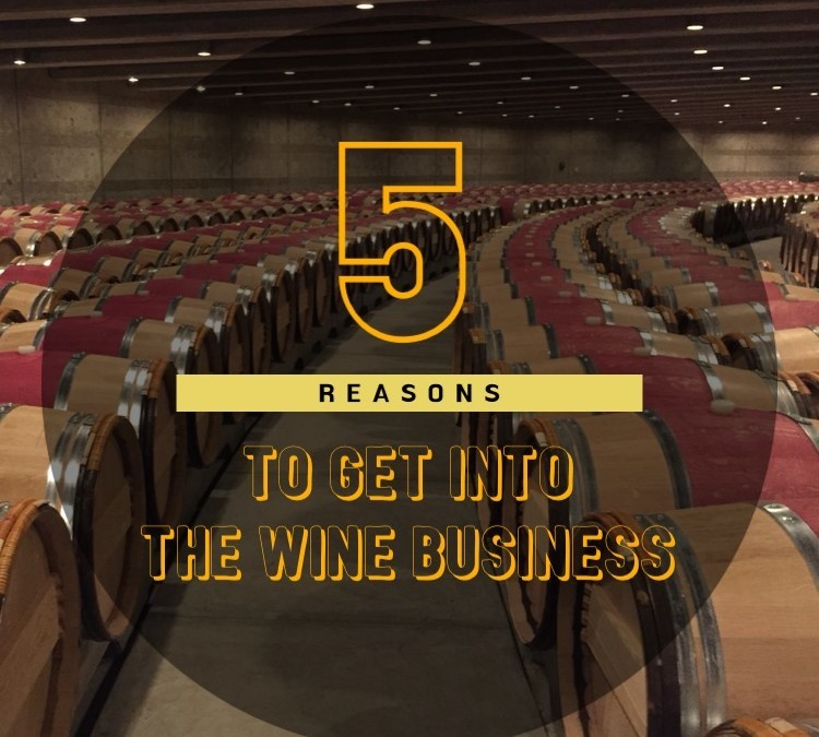 5 Reasons To Get Into the Wine Business