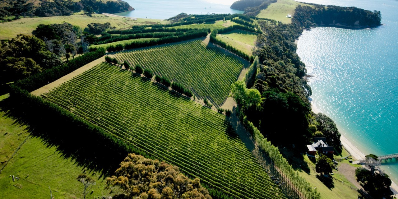New Zealand – Exhilarating Wines from a Pristine Land