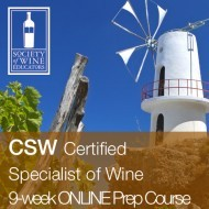 CSW Online Course
