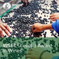 WSET Level 3