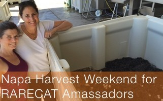 Napa Harvest Weekend for RARECAT Ambassadors