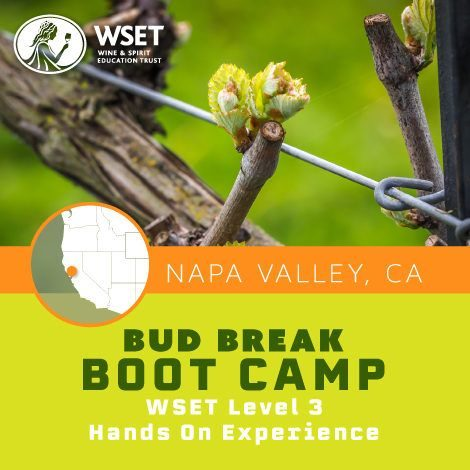 WSET Level 3 Advanced Certification - Napa Valley Wine Academy