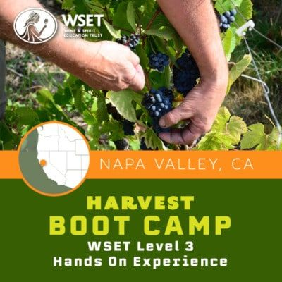 HarvestBootCamp