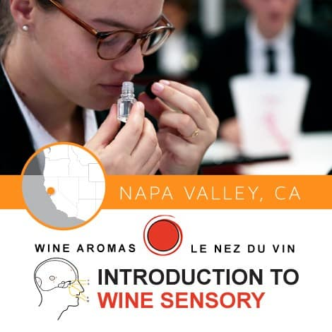 LeNez_Intro-to-Sensory_Napa2