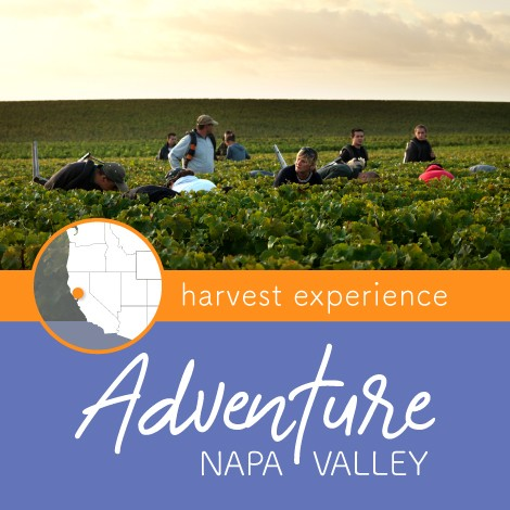 Adventure-Harvest2