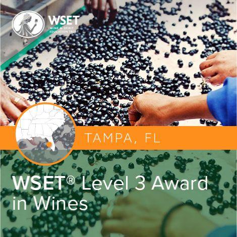 WSET_3_Tampa