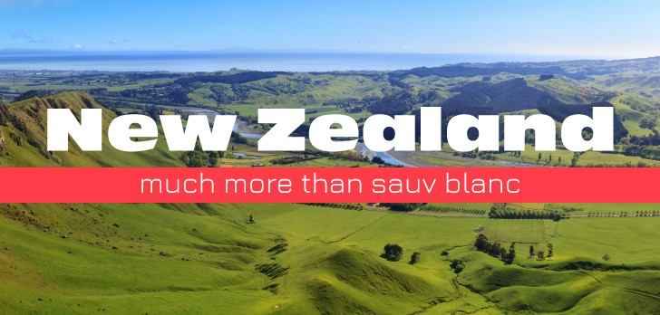 The Unexpected Diversity of New Zealand's Wine Industry